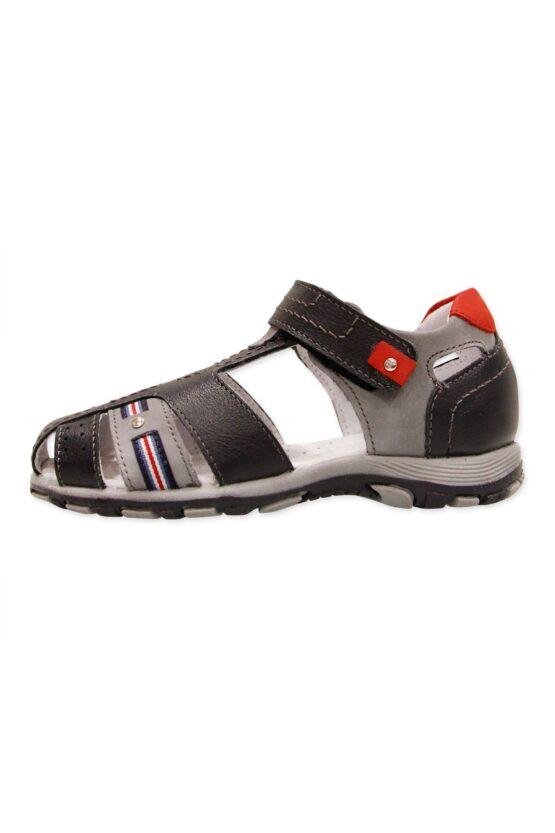 Կոշիկ
